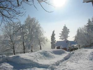 Bild zum Artikel: Winter in Wengen